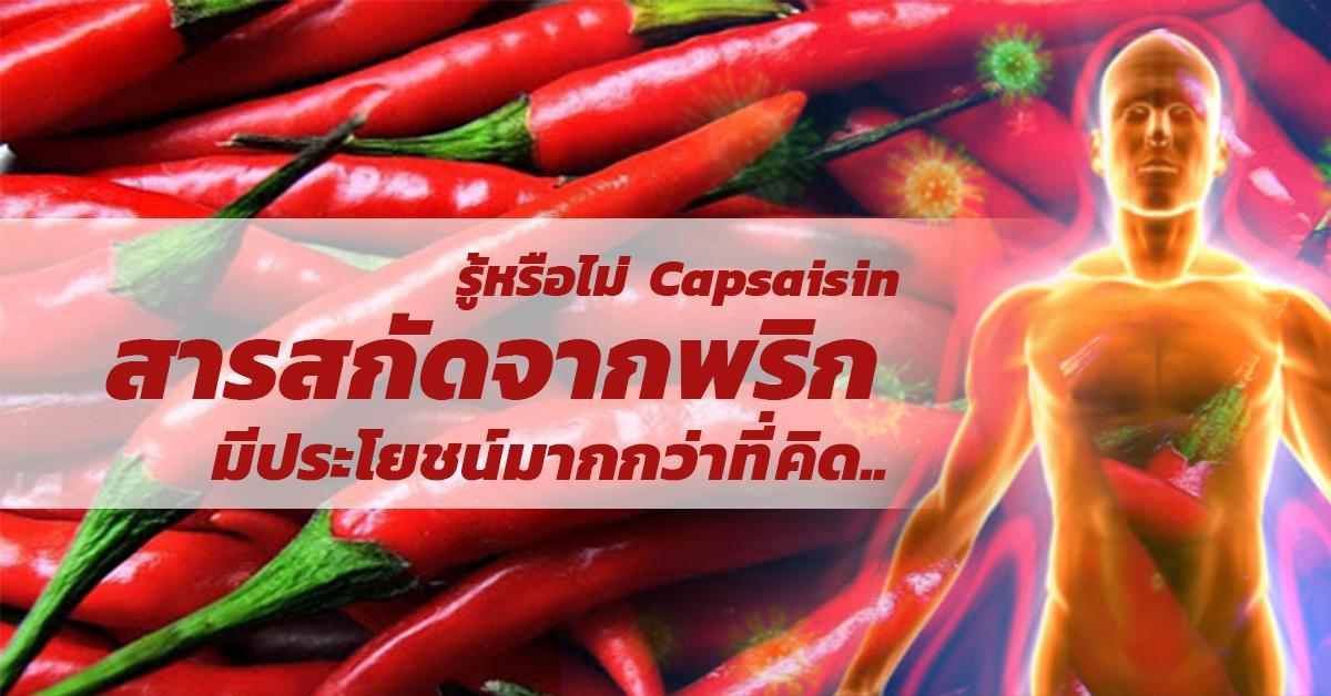 Capsaisin (สารสกัดจากพริก)