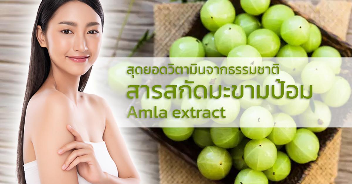 Amla extract สารสกัดมะขามป้อม
