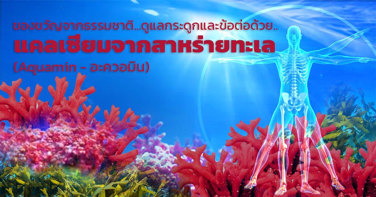 Aquamin (อะควอมิน-แคลเซี่ยมจากสาหร่ายทะเล)