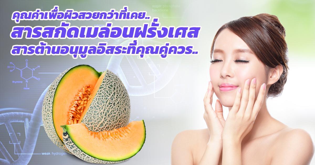 Melon Extract (SOD)