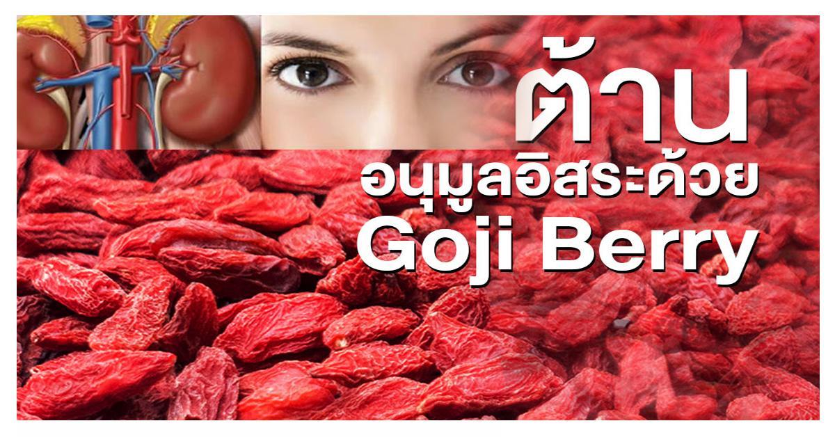 Gojiberry Extract (โกจิเบอรี่สกัด)