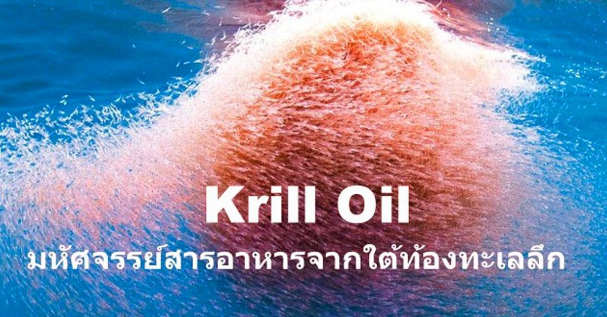 Krill Oil (คริลล์ออย) (กุ้งขนาดเล็ก หรือ เคย)