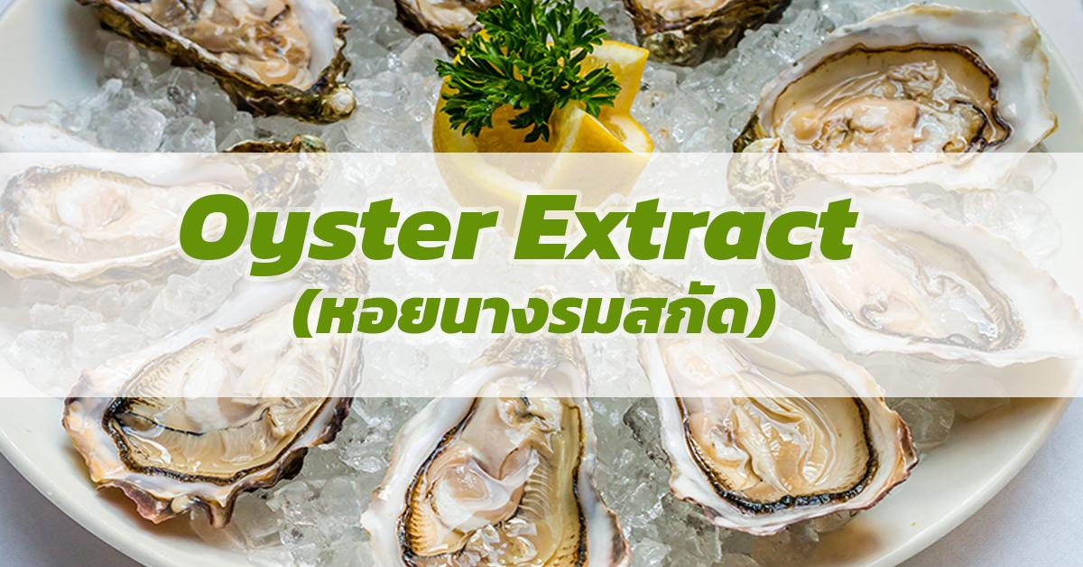 Oyster Extract (หอยนางรมสกัด)