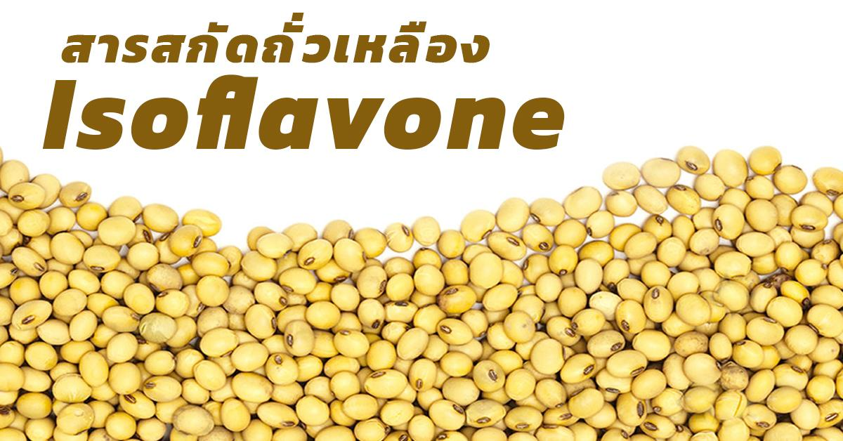 Isoflavone (สารสกัดถั่วเหลือง)