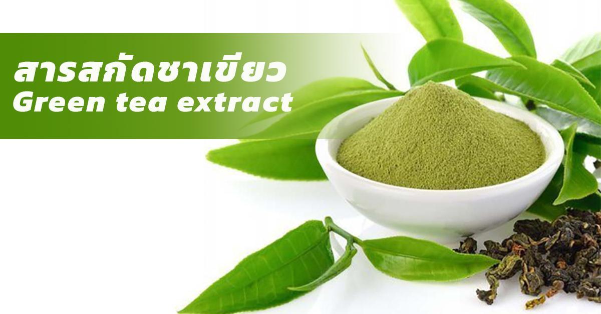 Green tea extract (สารสกัดชาเขียว)