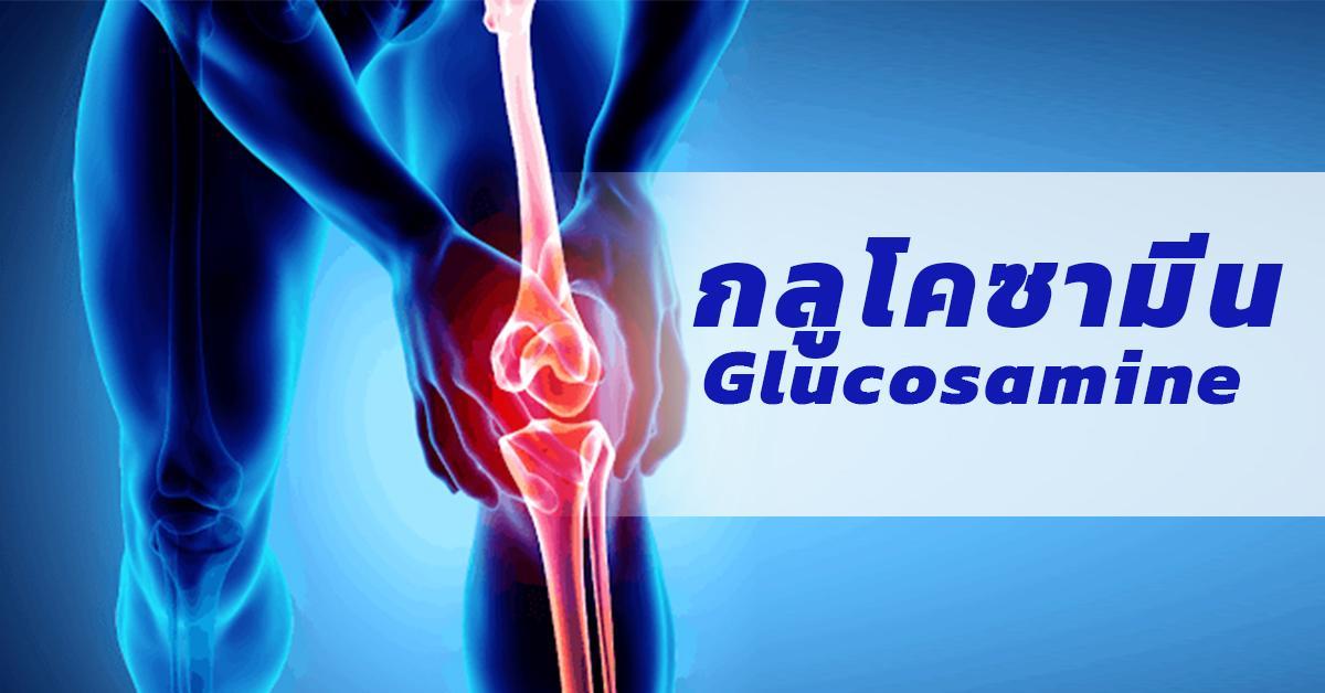 Glucosamine (กลูโคซามีน)