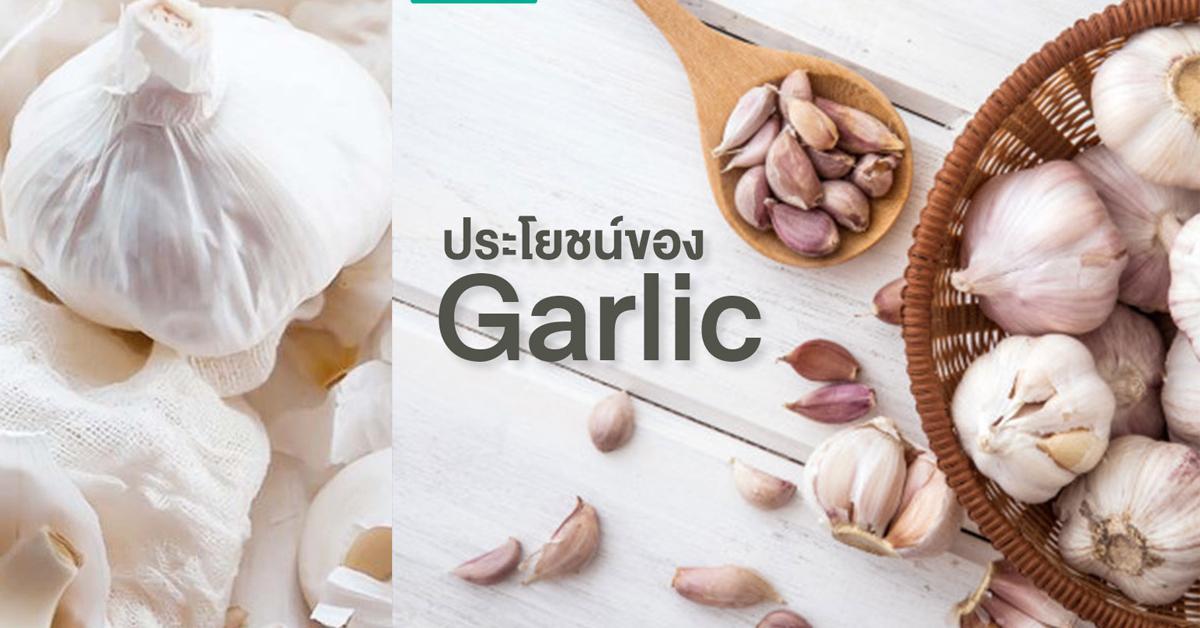 Garlic Extract (สารสกัดกระเทียม)