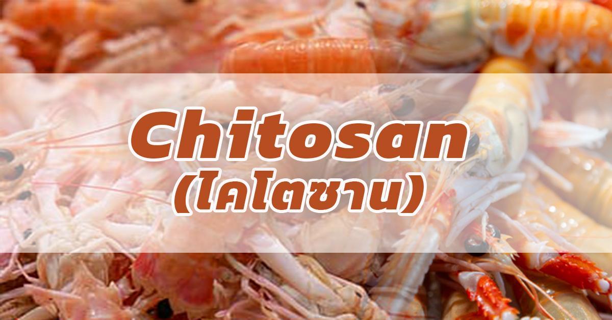 Chitosan (ไคโตซาน)