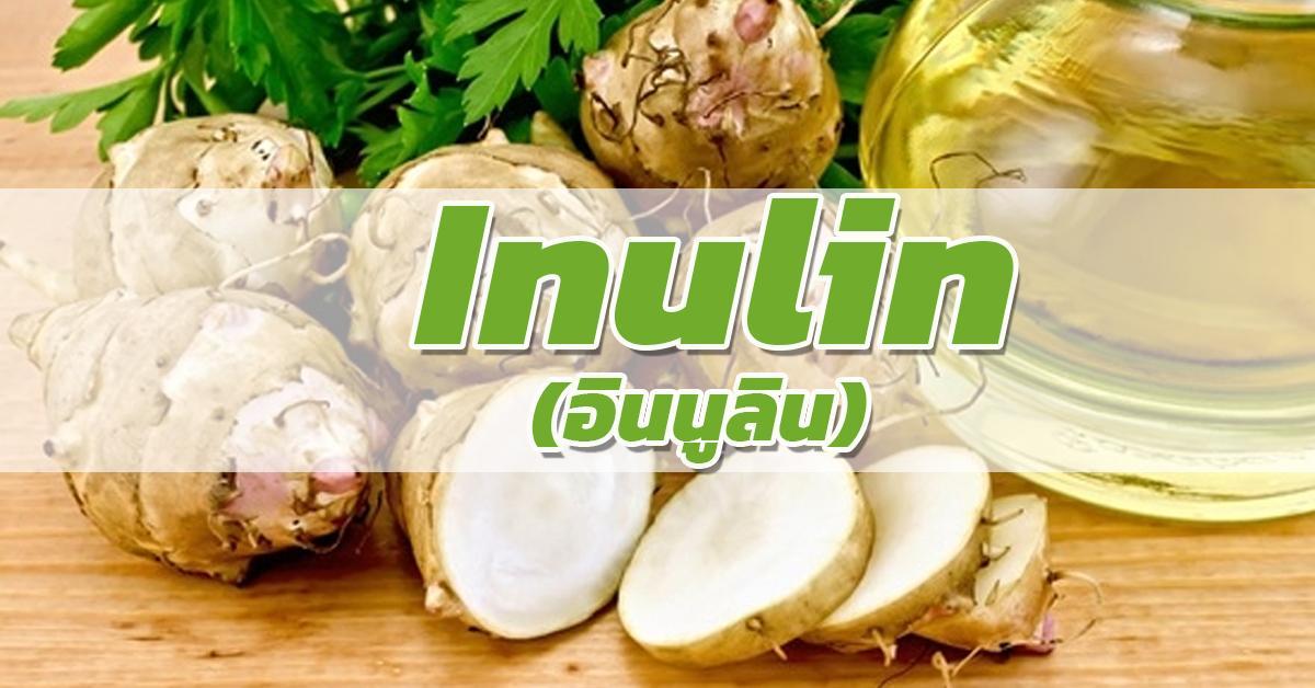Inulin (อินนูลิน)