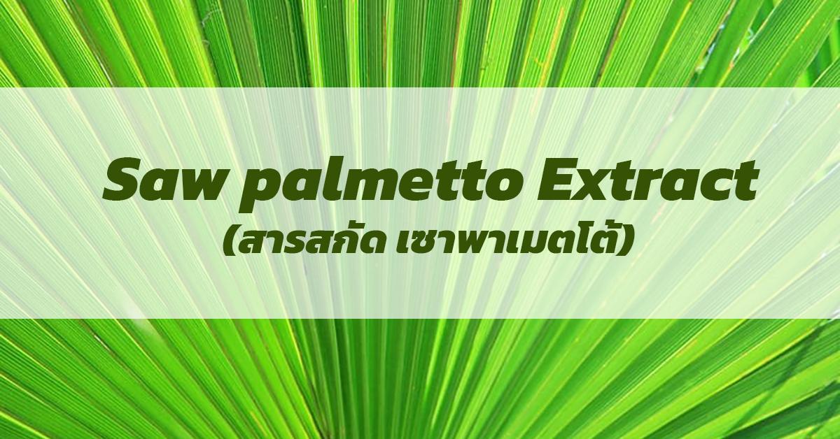 Saw palmetto Extract (สารสกัด เซาพาเมตโต้)