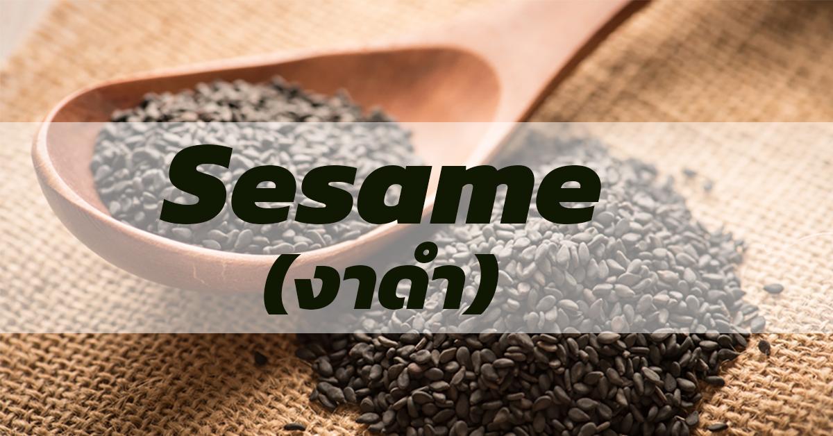 Sesame (งาดำ)