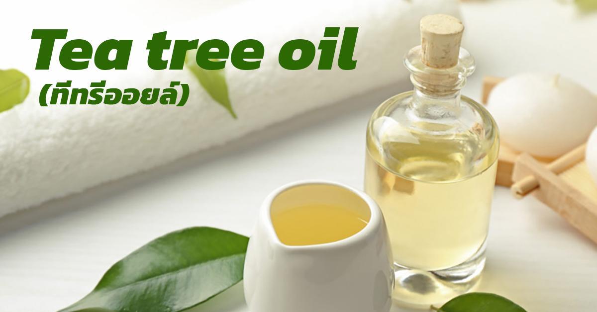 Tea tree oil (ทีทรีออยล์)