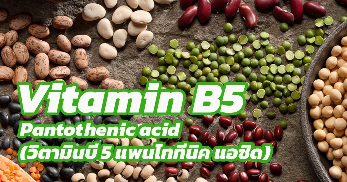Vitamin B5-Pantothenic acid (วิตามินบี 5 แพนโททีนิค แอซิด)