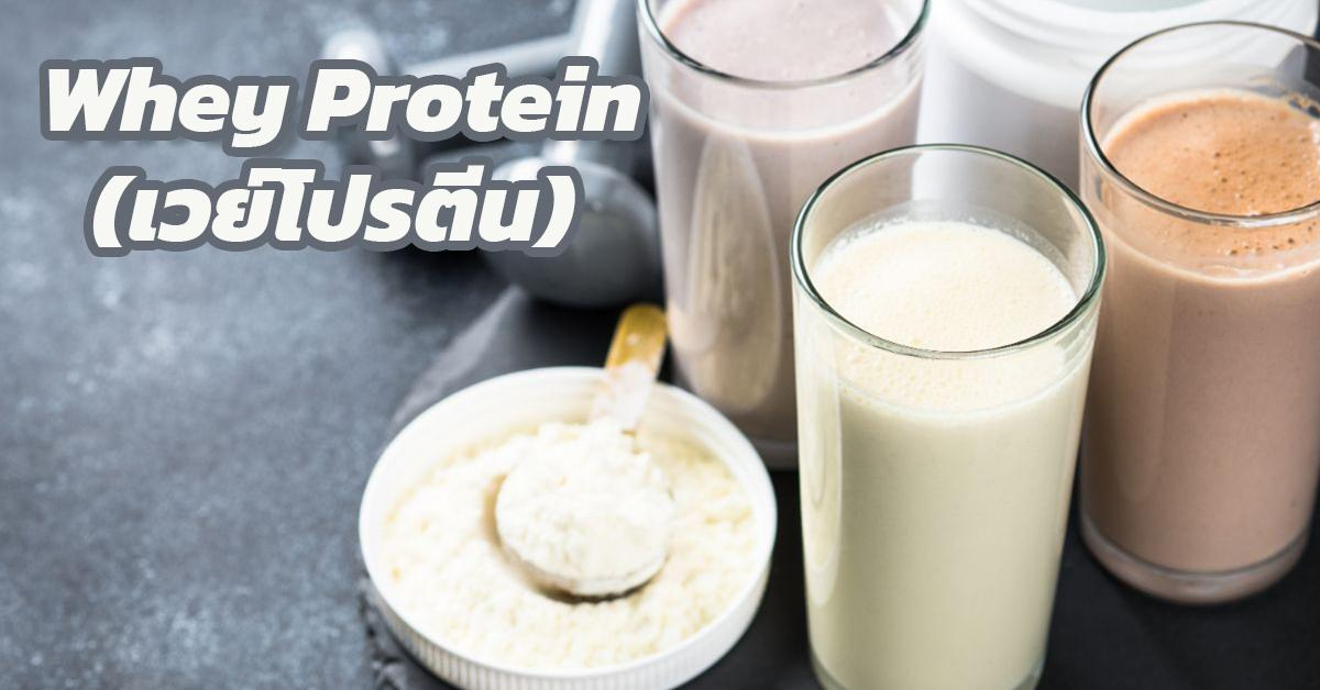 Whey Protein (เวย์โปรตีน)